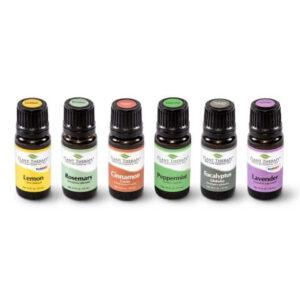 Essential Oils Set of 6